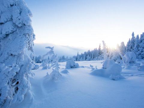 Ideální podmínky pro lyžování